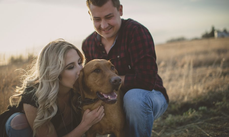 engagement photos with dog.