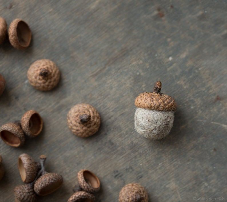 acorn magnet wedding favor