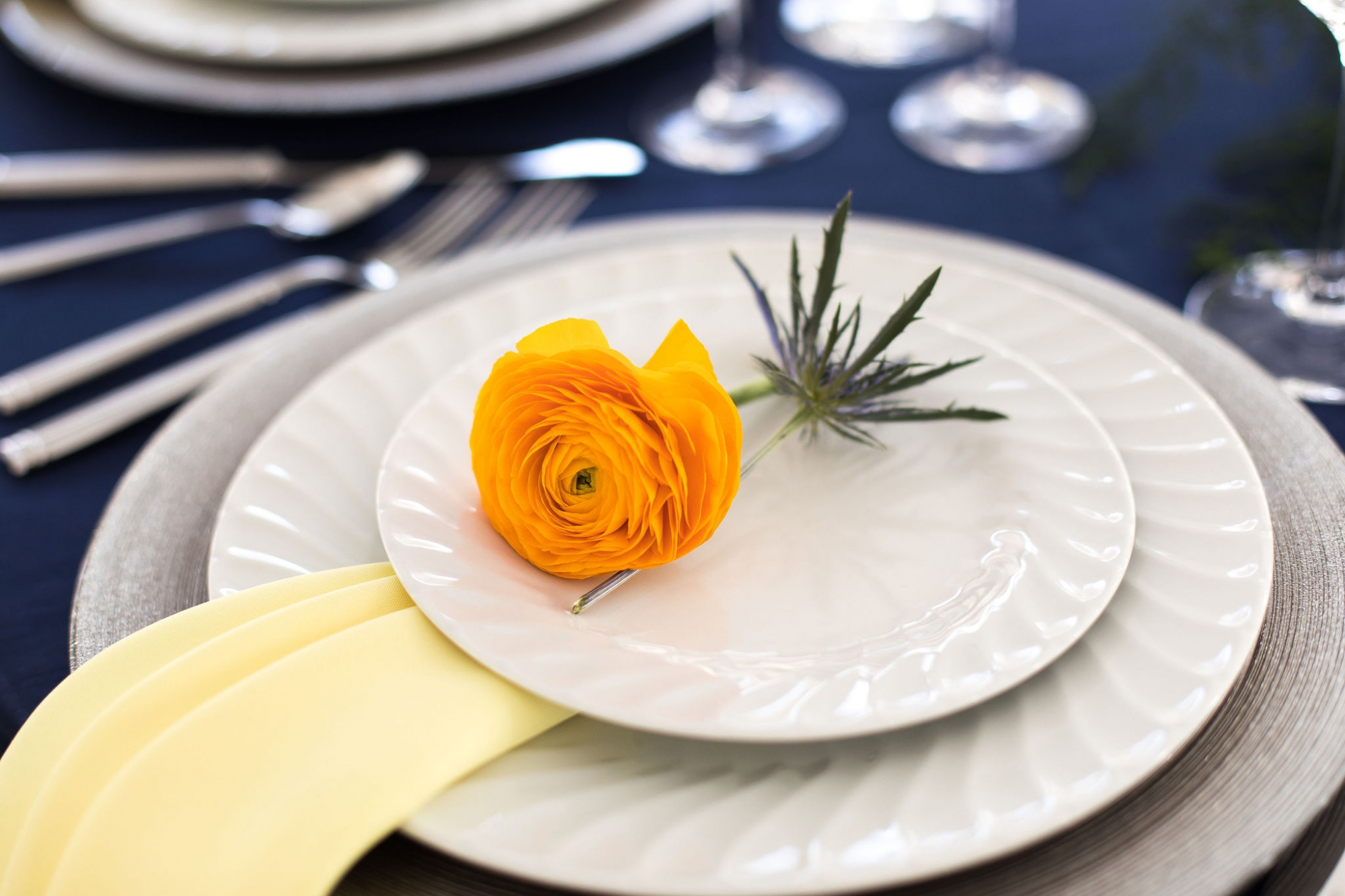 yellow and navy blue place setting