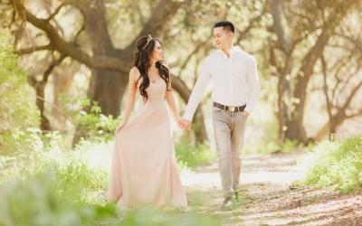 Fairytale Engagement Photos Featuring a White Horse