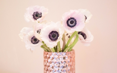 Wedding Flowers: White Anemones With A Hint Of Blush – FiftyFlowers