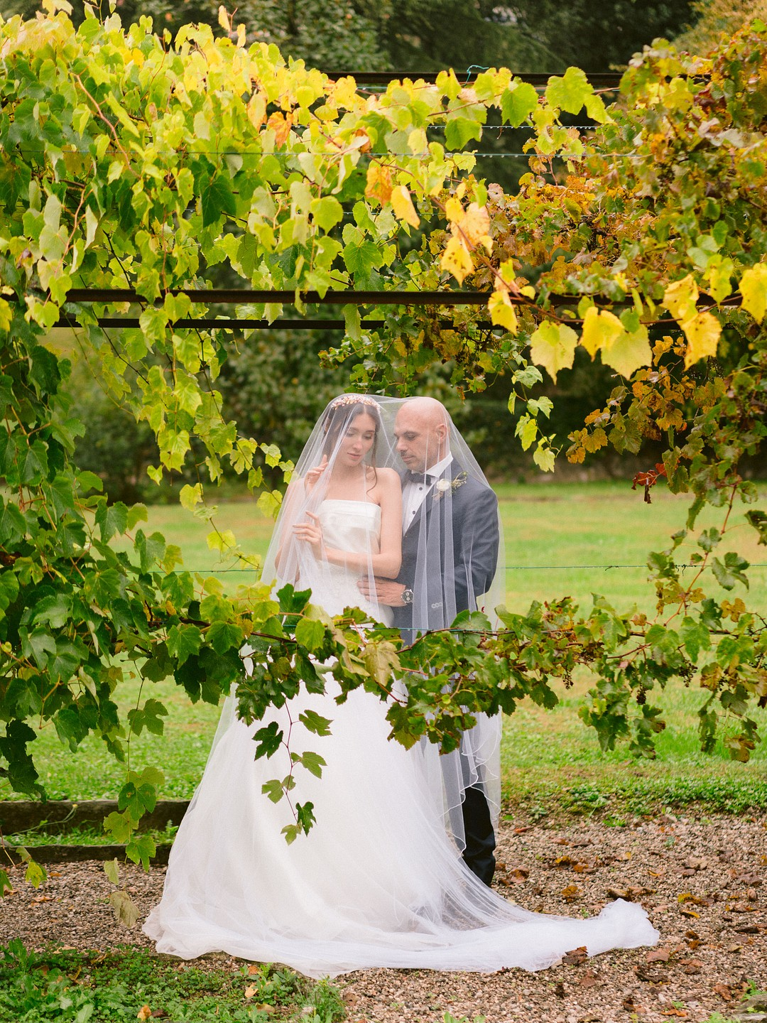 wedding picture under grapevines