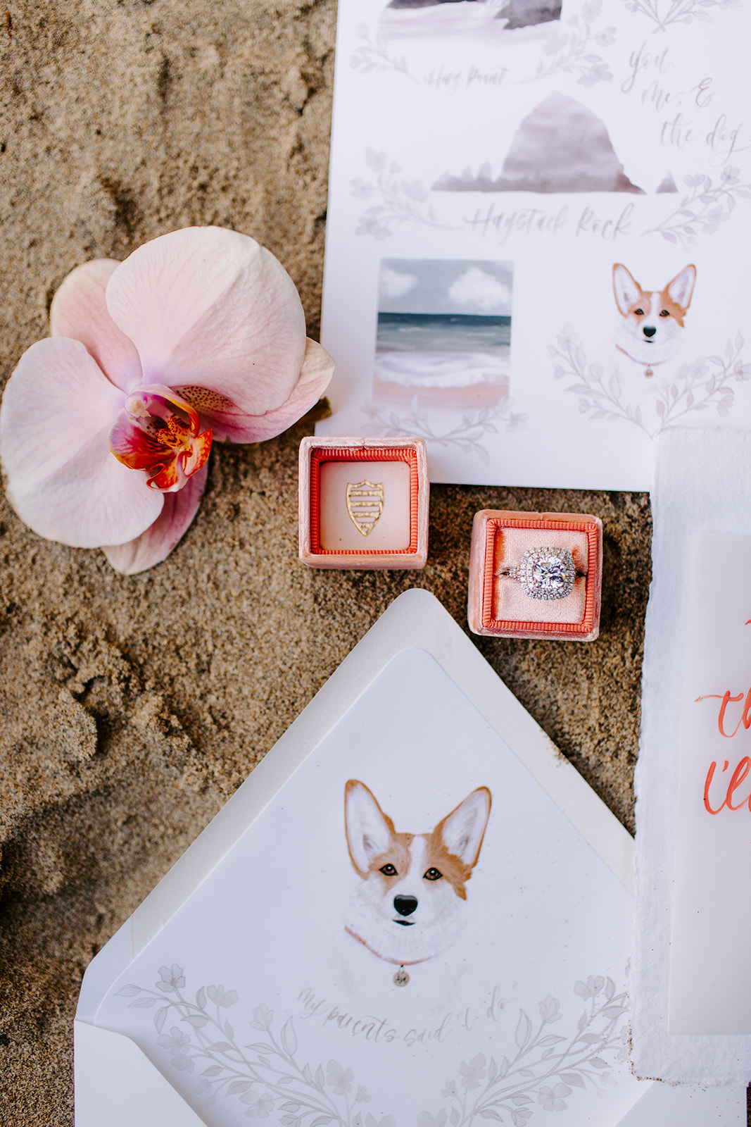 seaside elopement