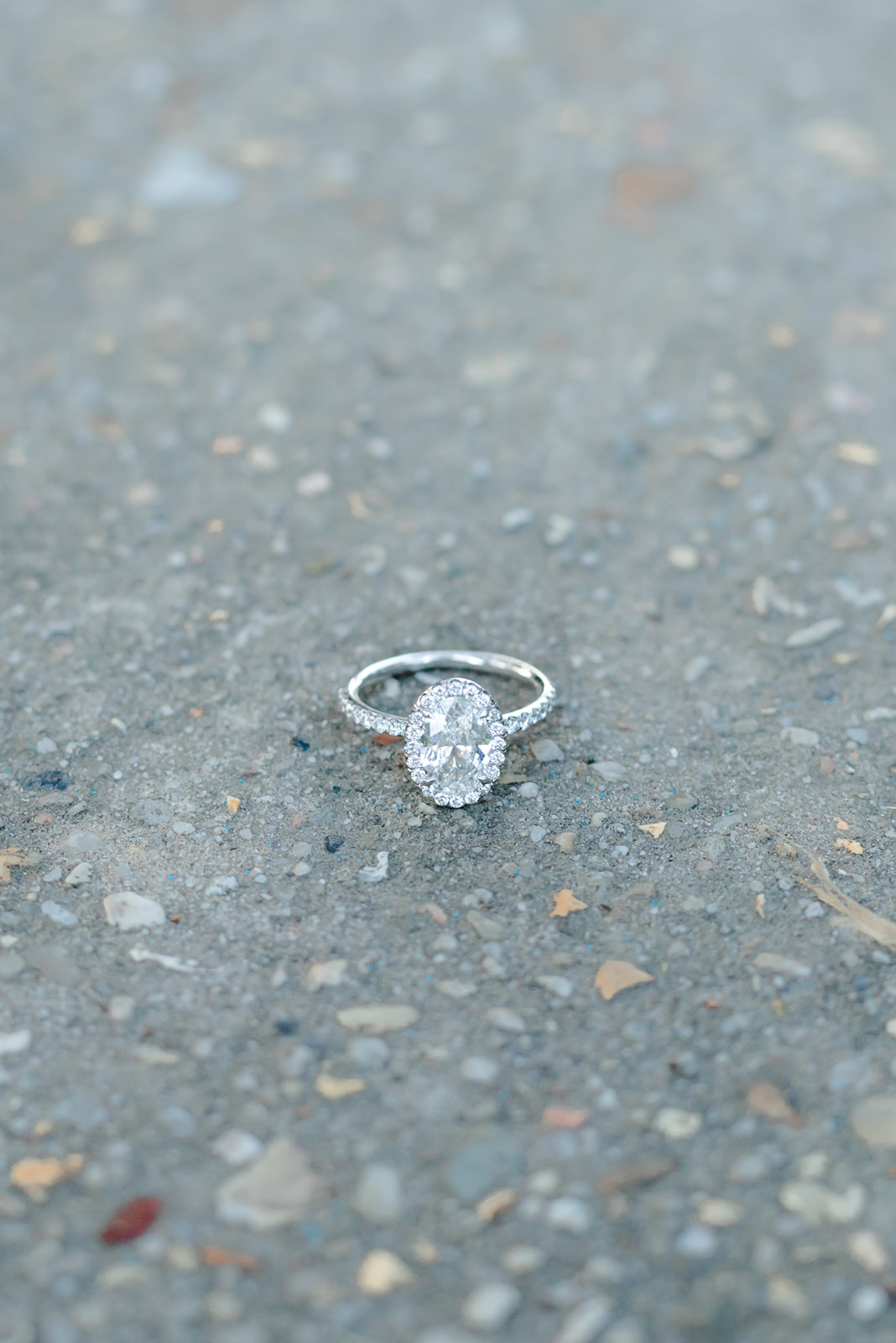 oval halo engagement ring on the pavement