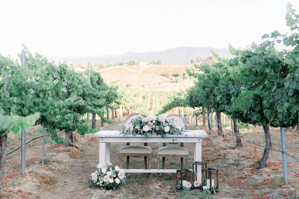 bride and groom table setup in a vineyard