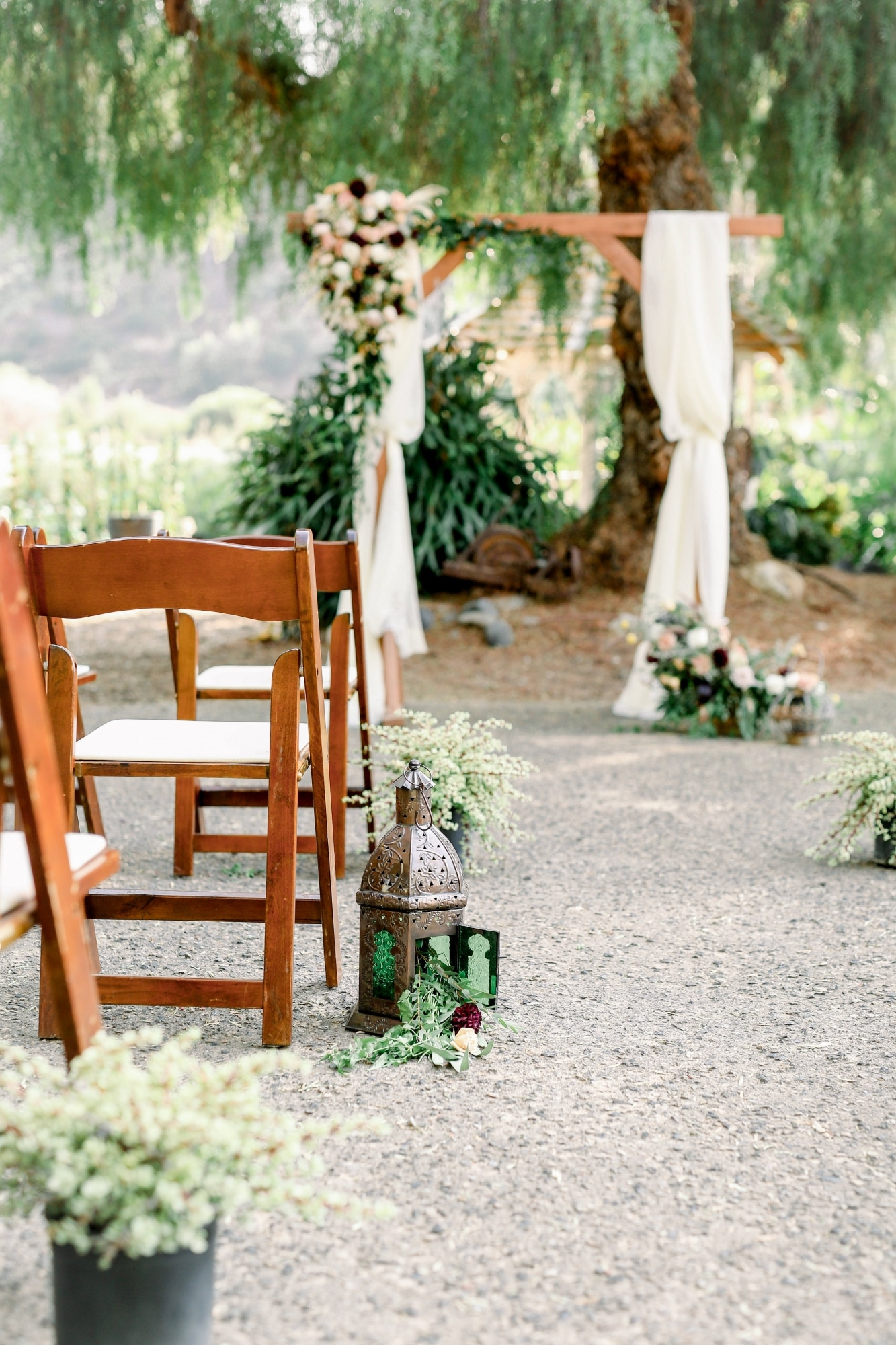 rustic wooden chairs that lead to the ceremony