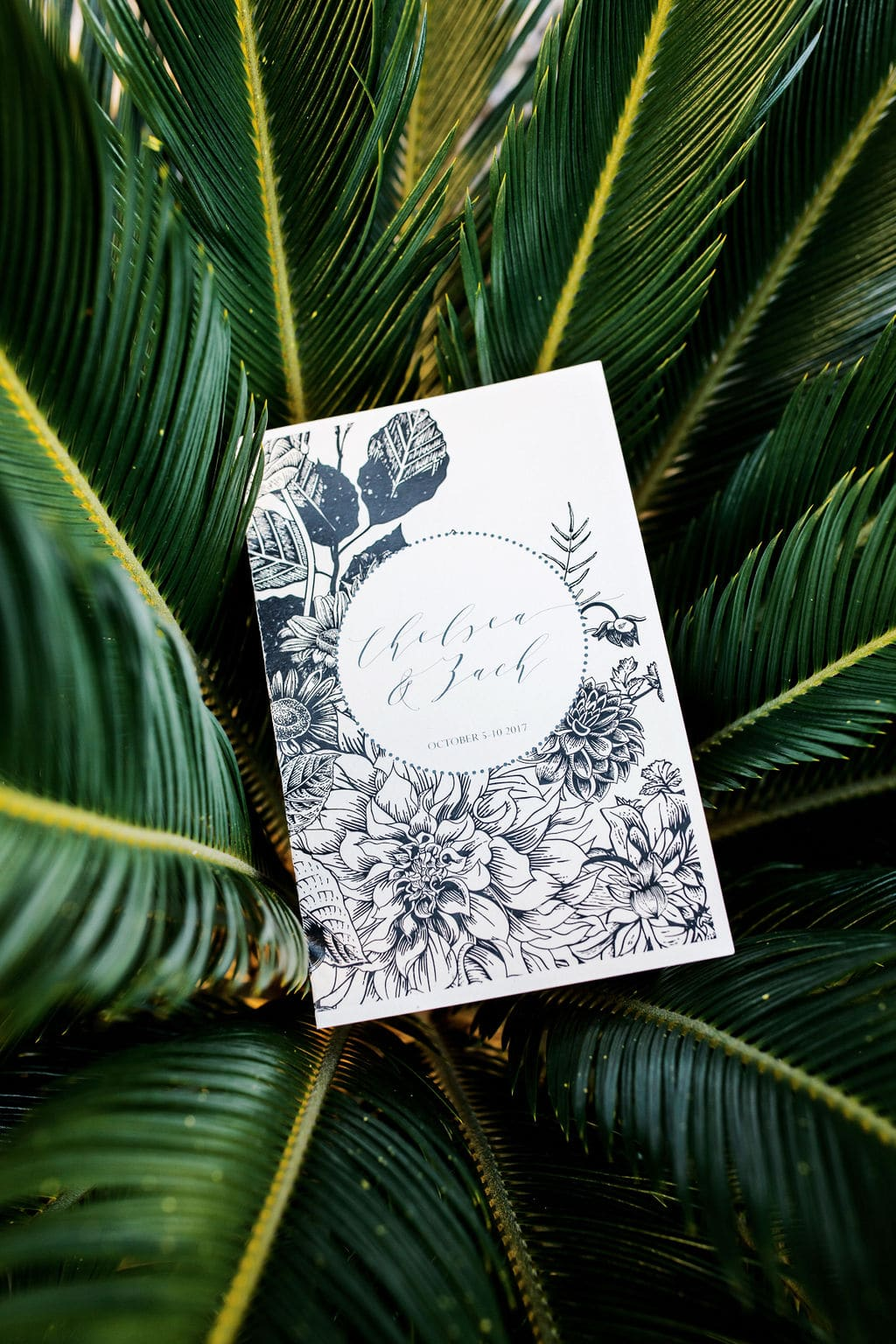weding invitation boho on top of palm s