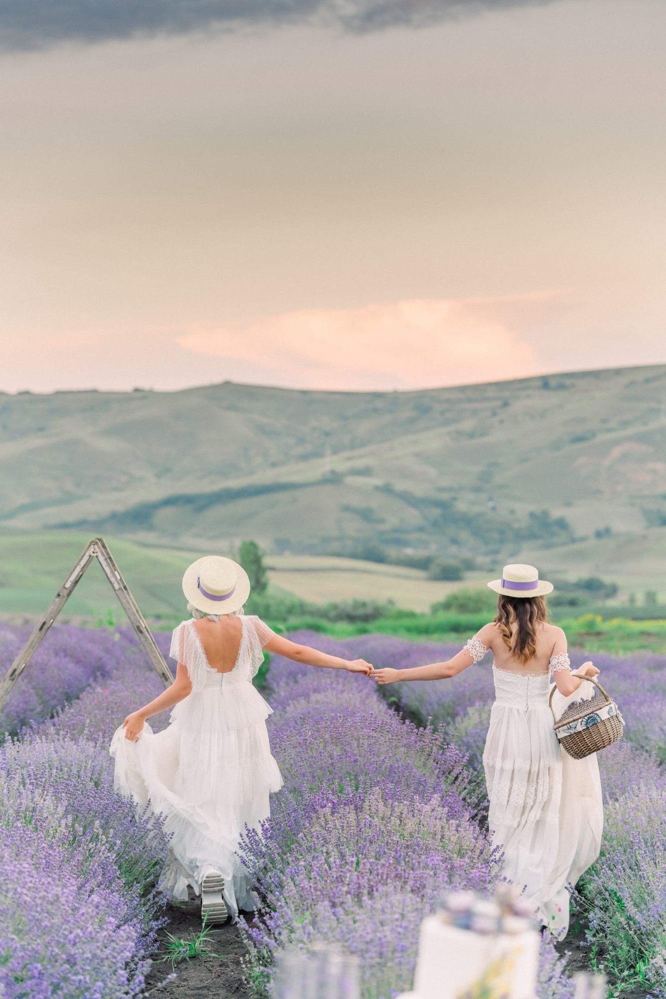 Lavender Field Bridal Portraits
